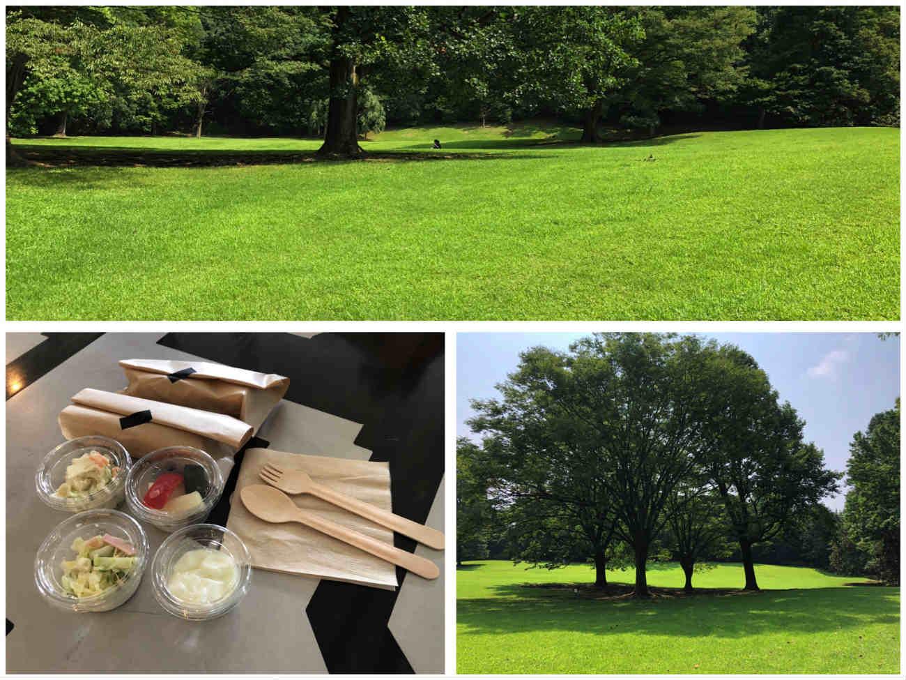 公園 と朝食