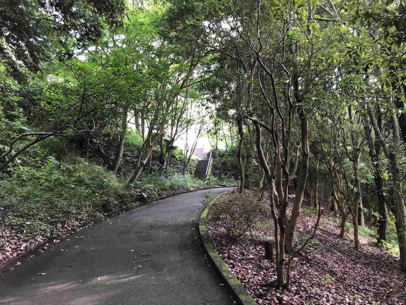 Inn the park の道