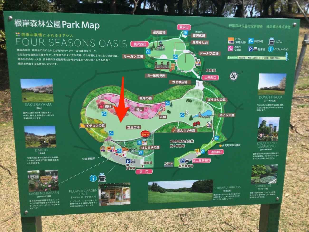 根岸森林公園のマップ