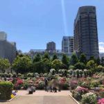 山下公園とホテルニューグランド